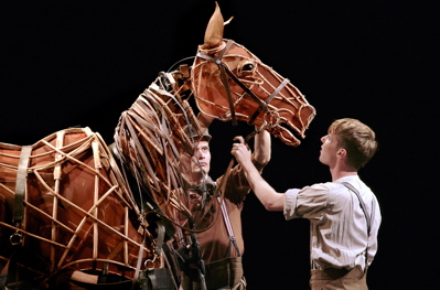 warhorse1x