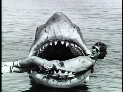 JAWS_Steven_Bruce